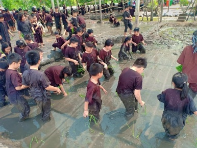Teambuilding Tiền Giang - Bến Tre.